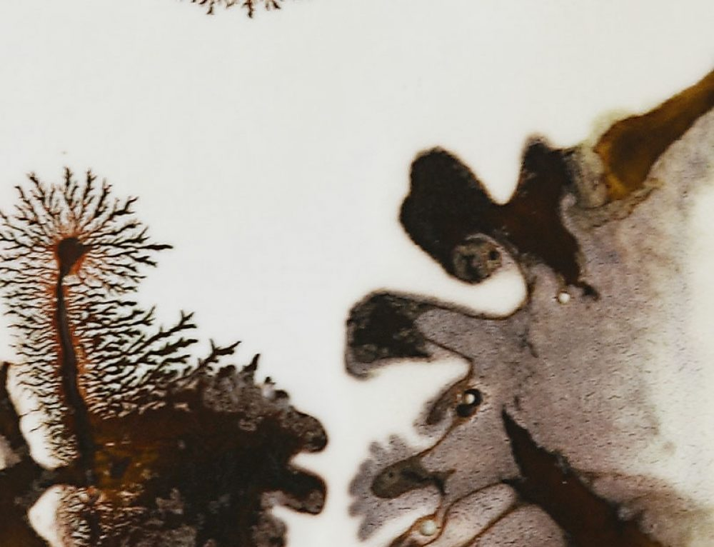 Sinogramme – 113 cm x 96 cm